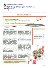 BSP Prelim Report
